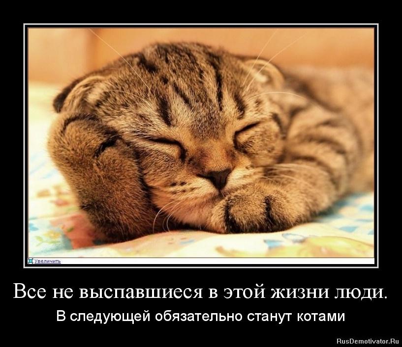 http://www.rusdemotivator.ru/uploads/04-20-12/1334911102-vse-ne-vyspavshiesya-v-yetoj-zhizni-lyudi..jpg