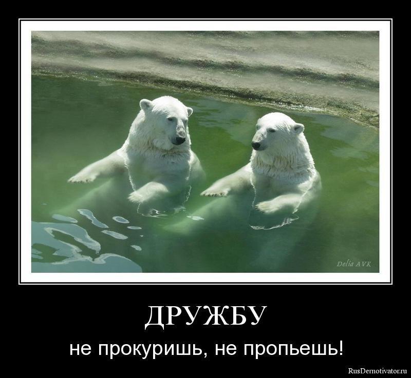 Демотиваторы о дружбе.