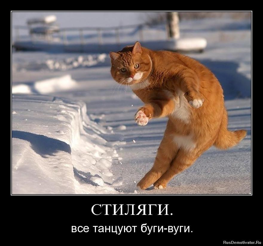 http://www.rusdemotivator.ru/uploads/posts/2010-08/1283179531_ndns3sm7xd3z.jpg